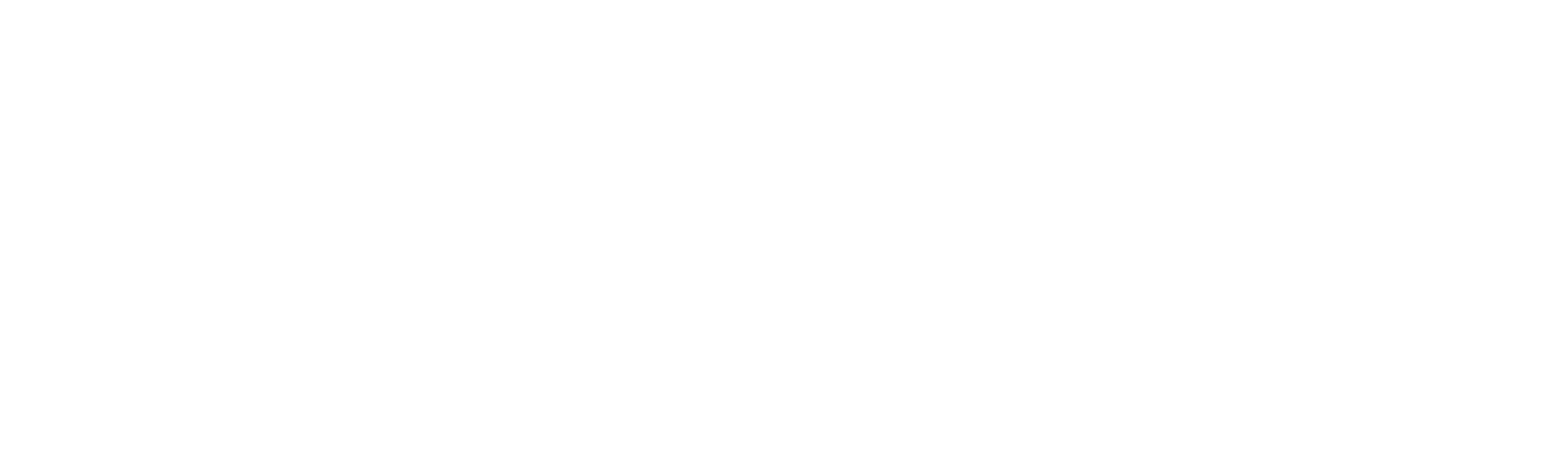 TEAM corporate logo